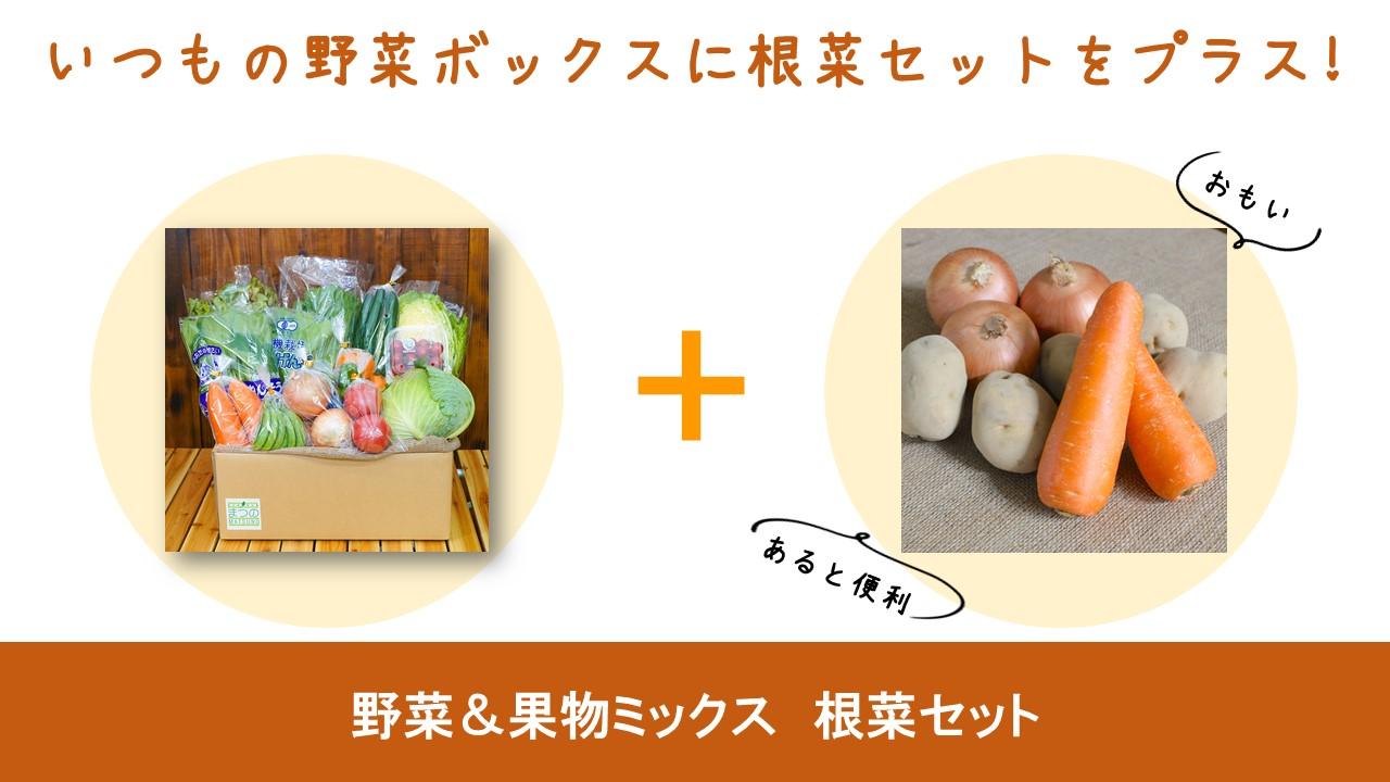 根菜セット2