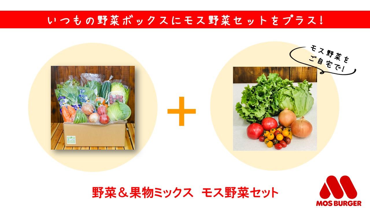 モス野菜セット